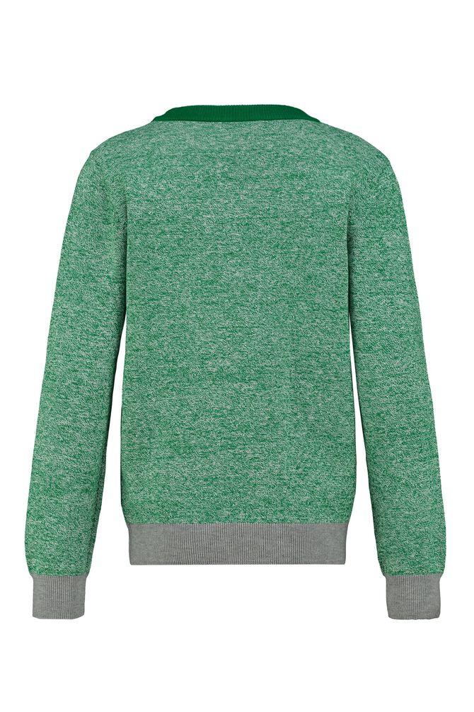 CKS KIDS - BEROEL - Pullover - groen
