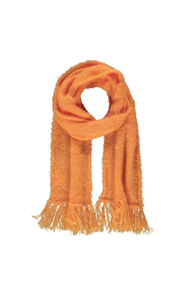 CKS KIDS - KITTY - Meisjes - oranje