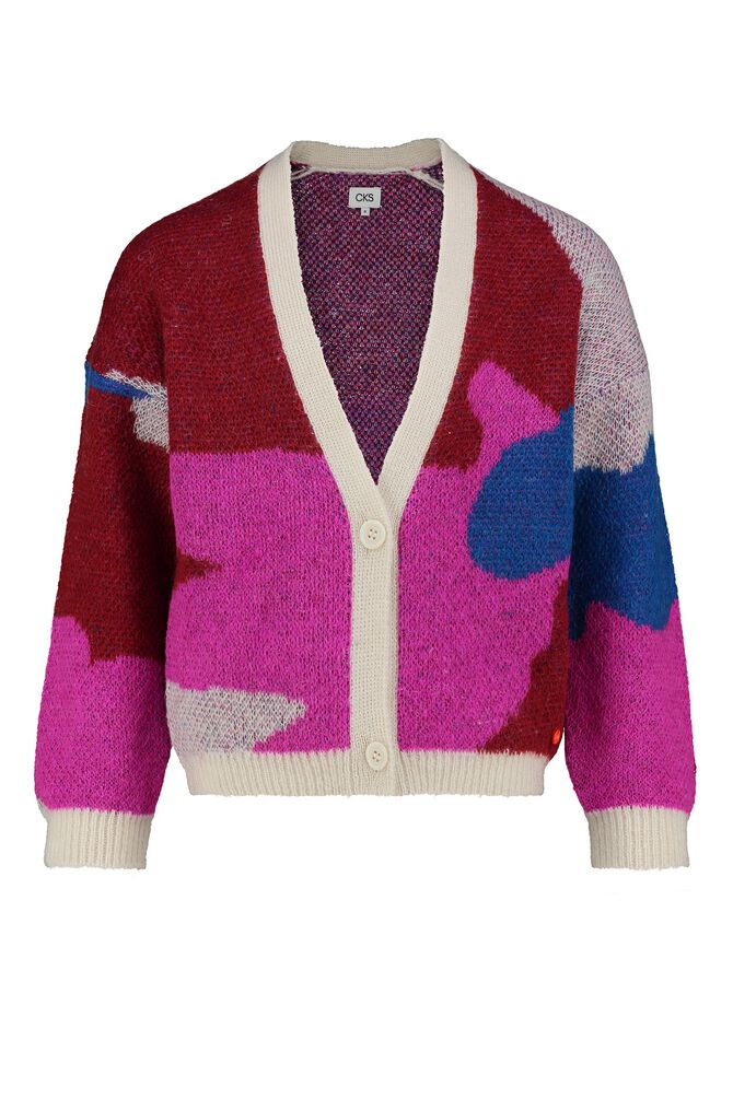 CKS KIDS - KLUFT - Cardigan - multicolor